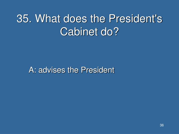 35. What does the President's Cabinet do?