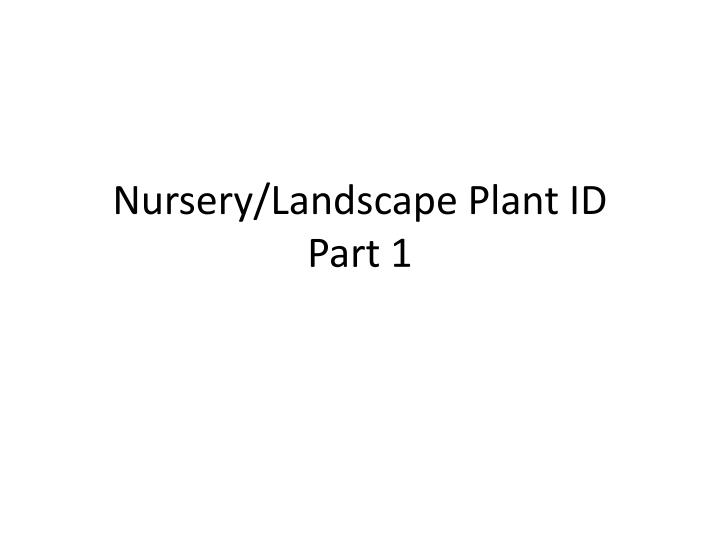 nursery landscape plant id part 1 n.