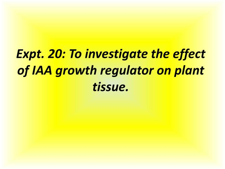 Expt. 20: To investigate the effect of IAA growth regulator on plant tissue.