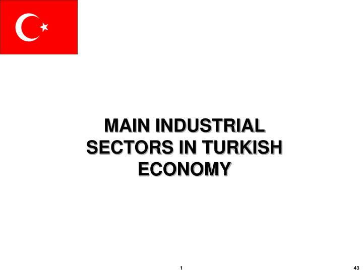 MAIN INDUSTRIAL  SECTORS IN TURKISH ECONOMY