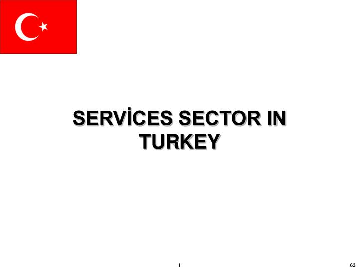 SERVİCES SECTOR IN TURKEY