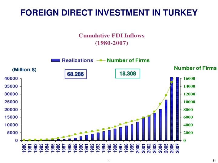 FOREIGN DIRECT INVESTMENT IN TURKEY