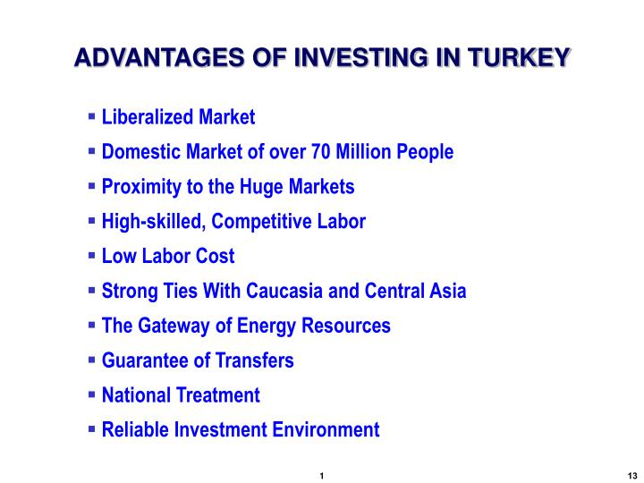 ADVANTAGES OF INVESTING IN TURKEY