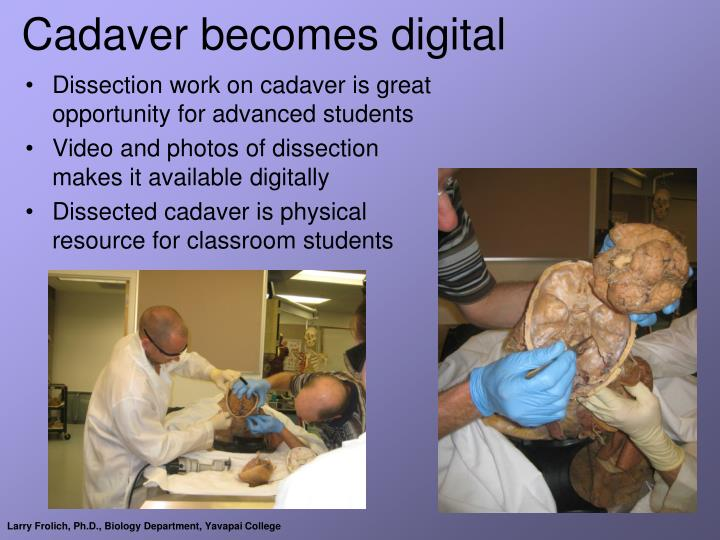 Cadaver becomes digital