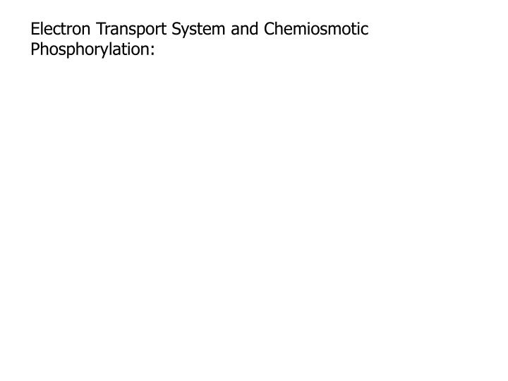 Electron Transport System and