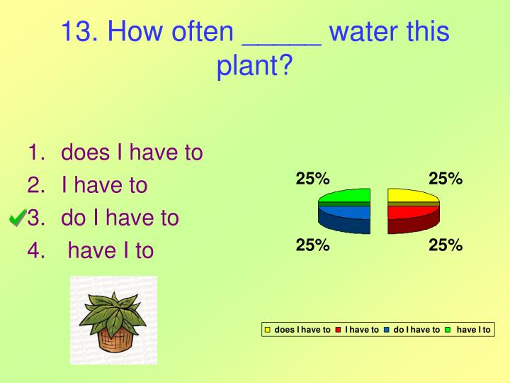 13. How often _____ water this plant?