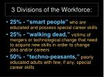 3 divisions of the workforce