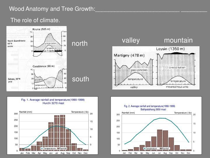 Wood Anatomy and Tree Growth:__________________________ ________