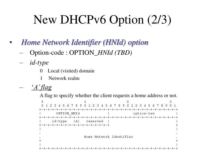 New DHCPv6 Option (2/3)