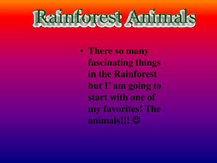 There so many fascinating things in the Rainforest but I' am going to start with one of my favorit...