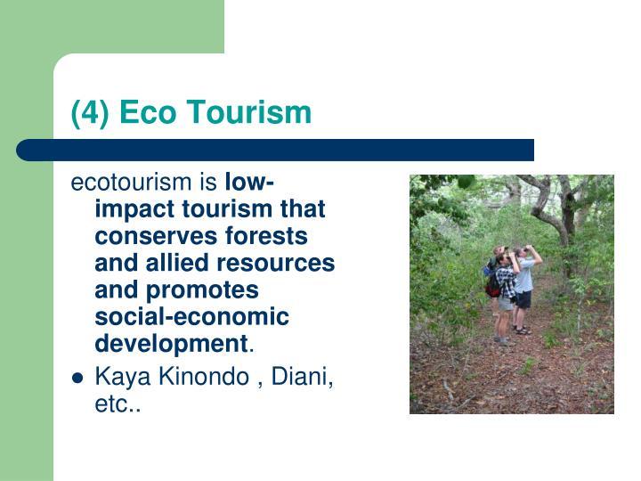 (4) Eco Tourism