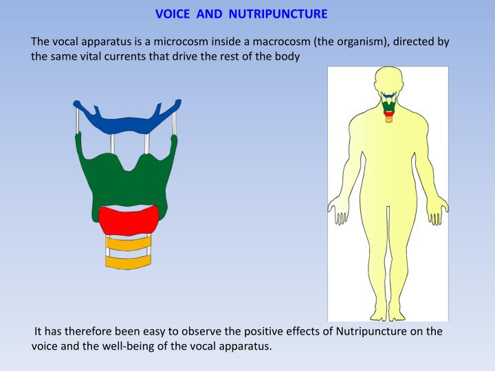 VOICE  AND  NUTRIPUNCTURE