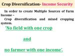crop diversification income security