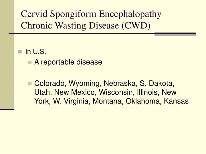 Cervid Spongiform Encephalopathy