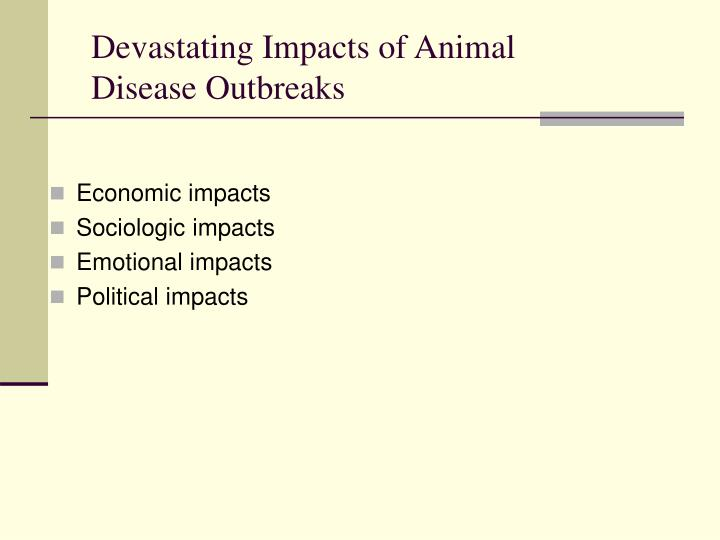 Devastating Impacts of Animal Disease Outbreaks