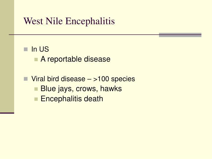 West Nile Encephalitis