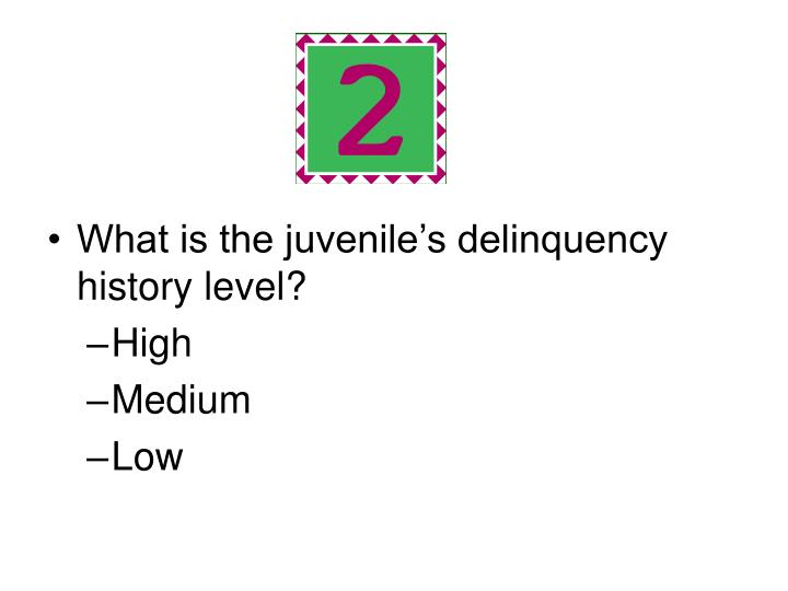 What is the juvenile's delinquency history level?