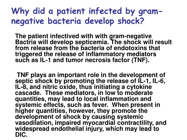 Why did a patient infected by gram-negative bacteria develop shock?