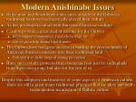 modern anishinabe issues