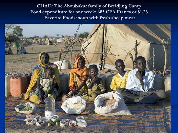 CHAD: The Aboubakar family of Breidjing Camp