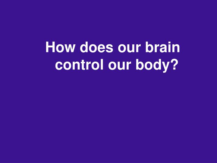 How does our brain control our body?