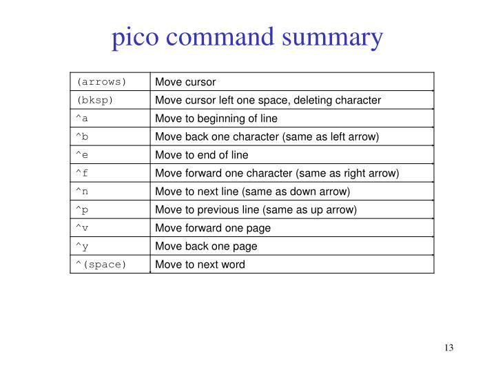 pico command summary
