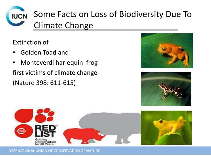 impact of climate change on biodiversity Addressing the impacts of climate change on biodiversity will require a long-term effort and new ways of thinking to help species and ecosystems cope with climate change, oeh has developed priorities for biodiversity adaptation to climate change (10771prioritiesbioadaptccpdf, 1296 kb.