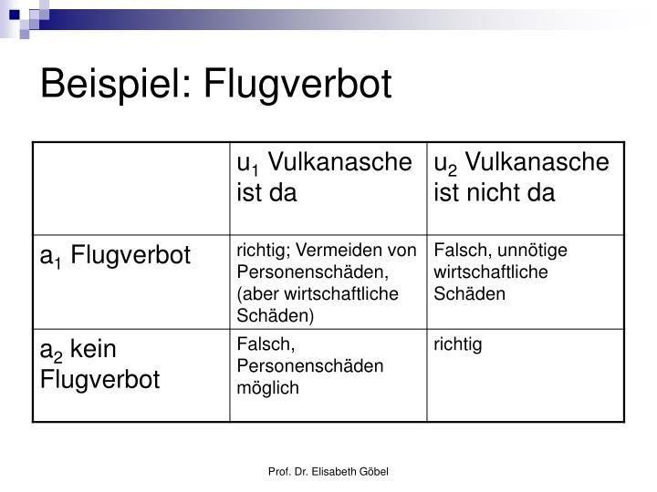 Beispiel: Flugverbot