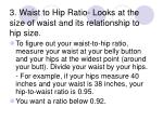 3 waist to hip ratio looks at the size of waist and its relationship to hip size