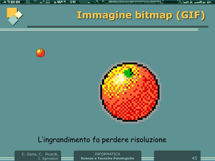 Immagine bitmap (GIF)