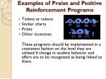 examples of praise and positive reinforcement programs