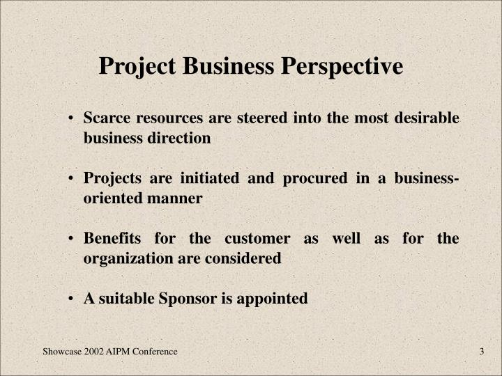 Project business perspective