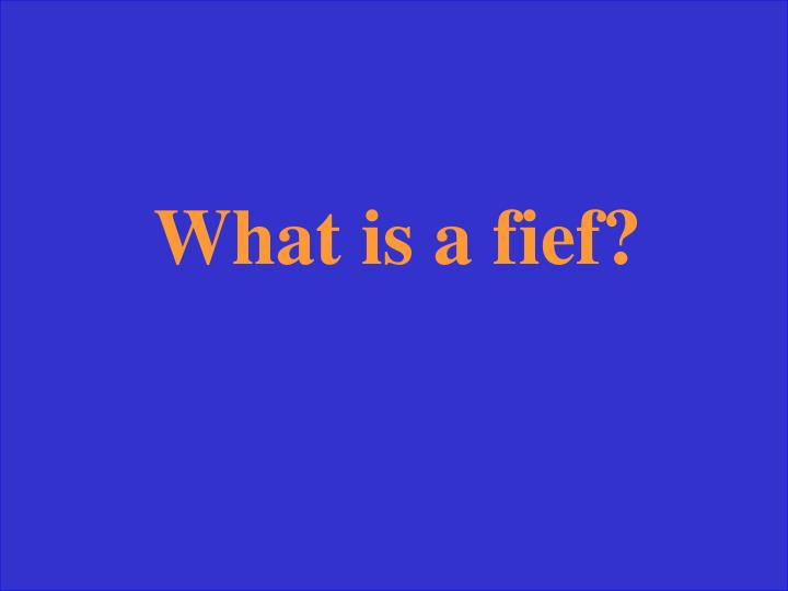 What is a fief?