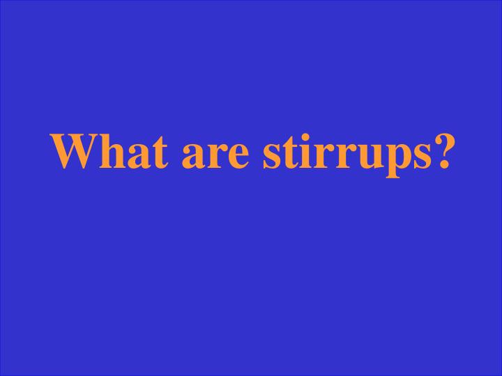 What are stirrups?