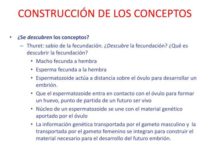 Construcci n de los conceptos