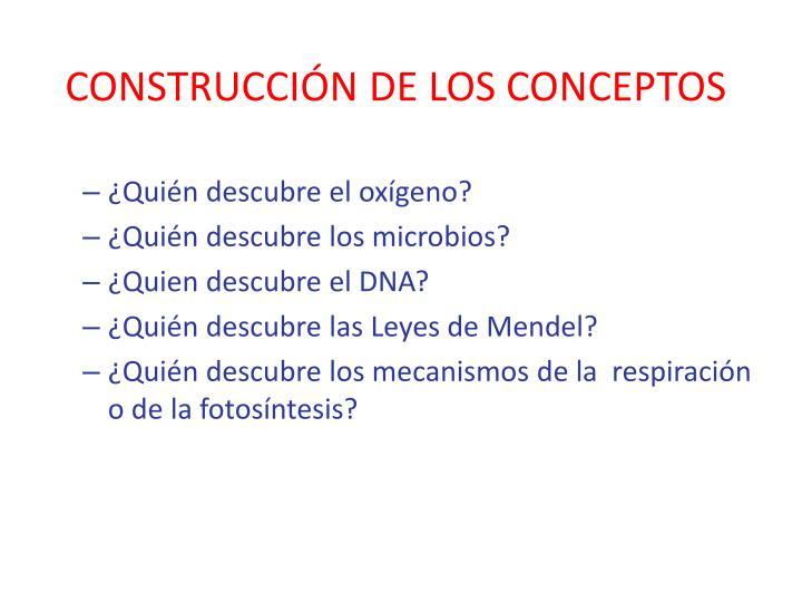 Construcci n de los conceptos1