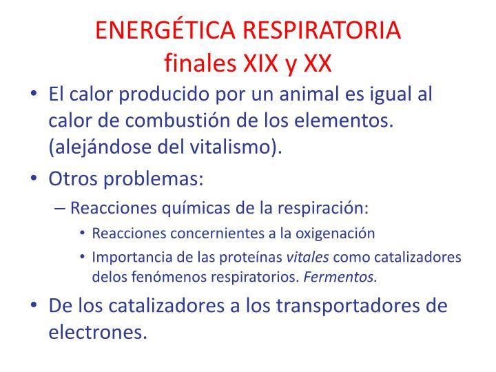 ENERGÉTICA RESPIRATORIA