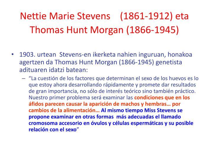 Nettie Marie Stevens    (1861-1912) eta