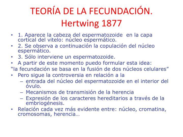 TEORÍA DE LA FECUNDACIÓN.