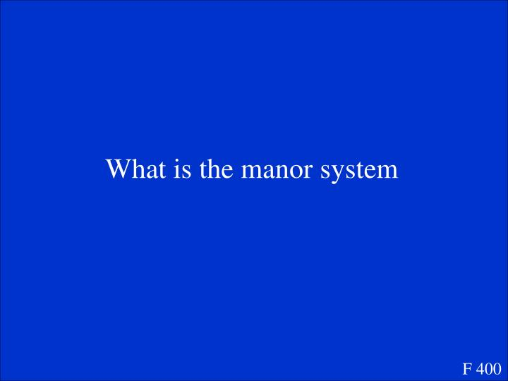 What is the manor system