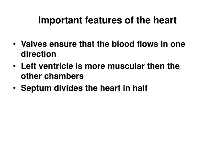 Important features of the heart