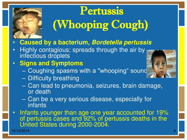the communicable disease pertussis essay We monitor communicable disease outbreaks  part of the san francisco department of public health  from whooping cough until the baby can get its own shots.
