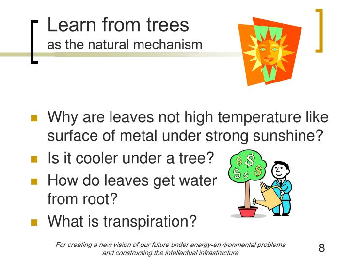 Learn from trees