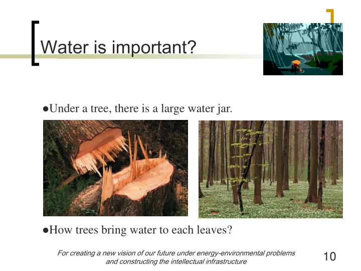 Water is important?