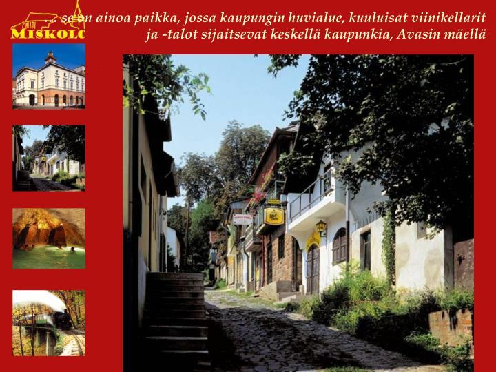 … se on ainoa paikka, jossa kaupungin huvialue, kuuluisat viinikellarit ja -talot sijaitsevat keskellä kaupunkia, Avasin mäellä
