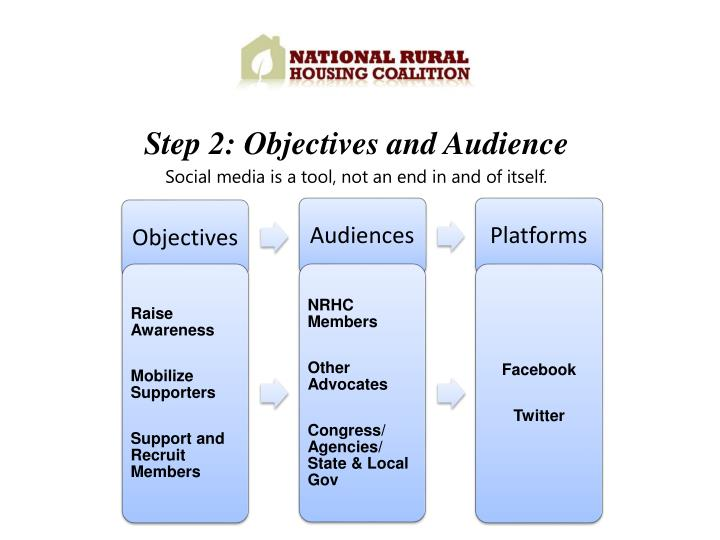Step 2: Objectives and Audience