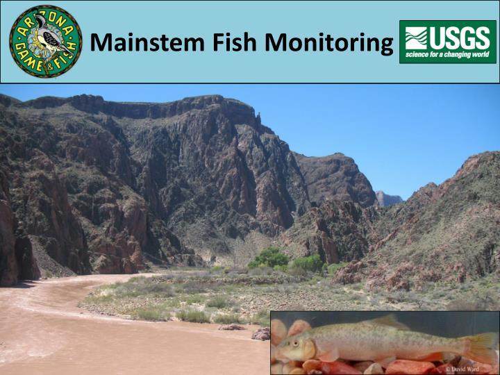 Mainstem Fish Monitoring