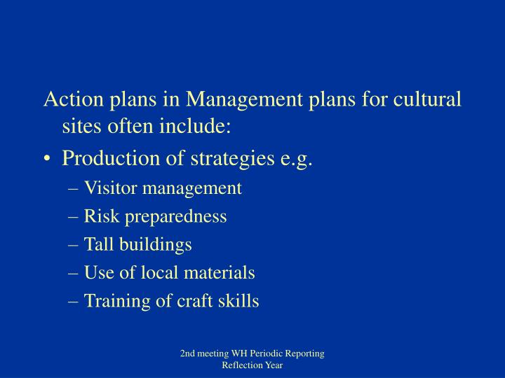 Action plans in Management plans for cultural sites often include: