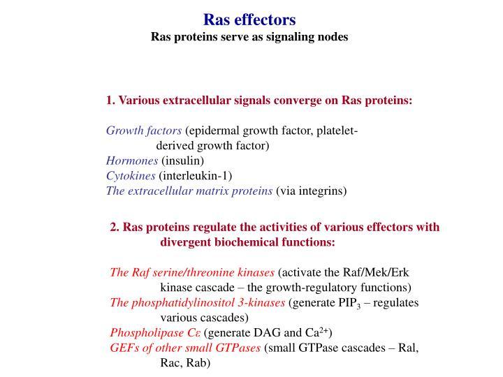 Ras effectors