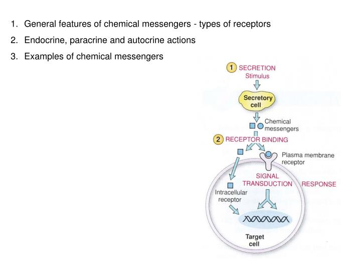 General features of chemical messengers - types of receptors